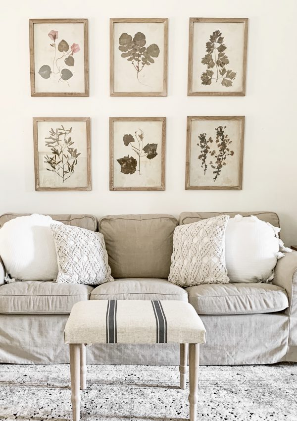 How To Hang A Botanical Print Gallery Wall