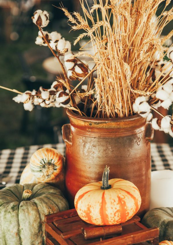 Farm To Table Dinner – Fall Table Vignettes