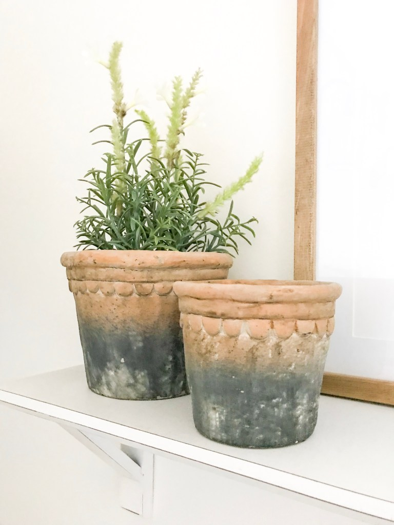 close up of Ikea plants in pots