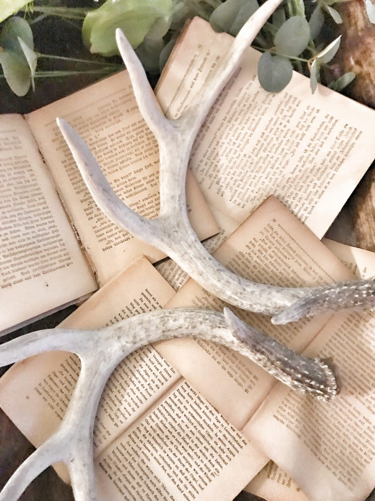 close up of vintage books with antlers